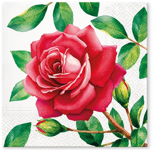 Serwetki Tissue 3-warstwowe, 33 x 33, Decor SPECIAL ROSE, składane na 1/4, 240 szt. w op.